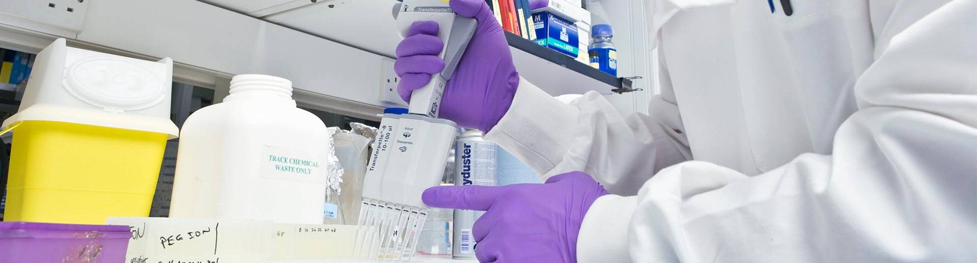 scientist working with assay substrates and reagents
