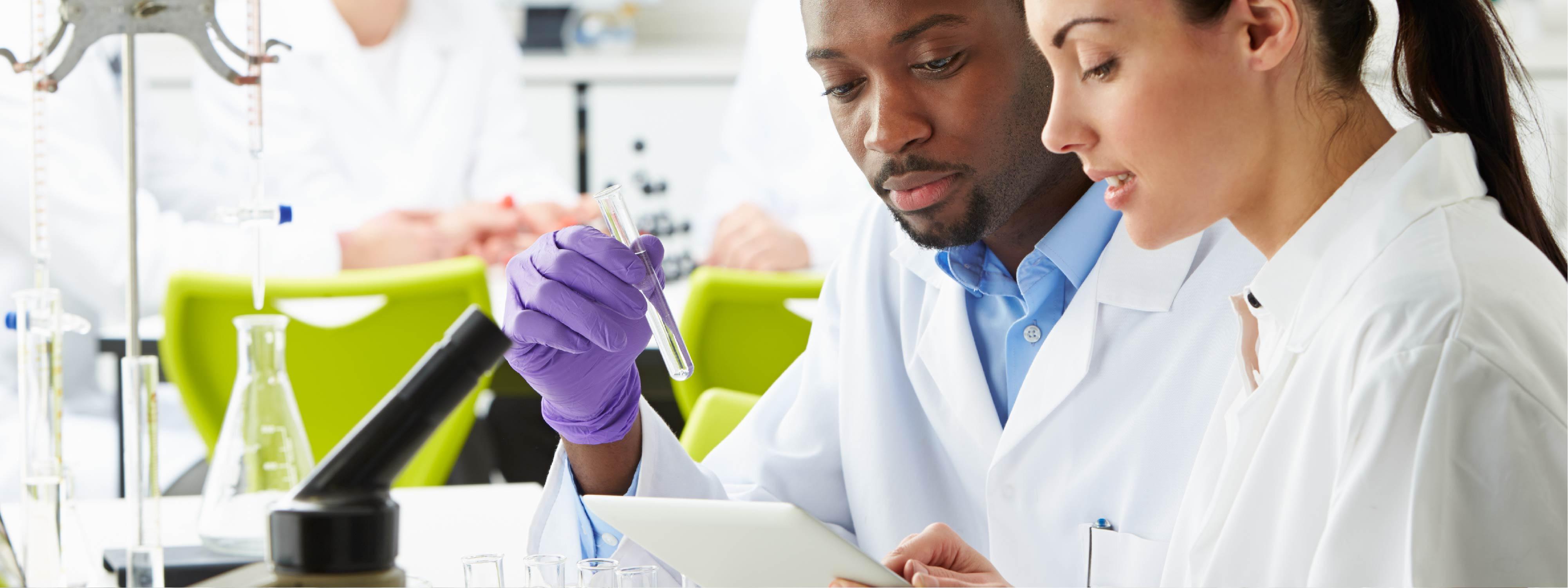 scientist following indirect elisa protocol