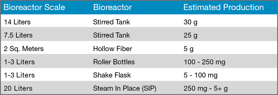 Bioreactor scale, type and production table.