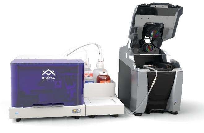 CODEX system, technology, instrument